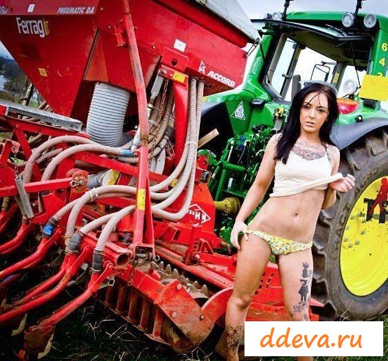Tractors and pussy